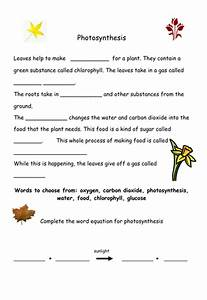 Photosynthesis By Geminiwhizz - Teaching Resources