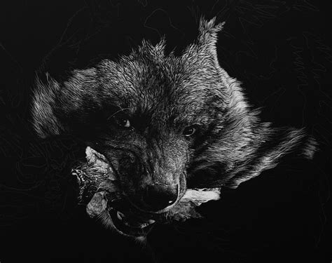 photo realistic wild animal scratchboard art