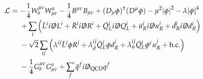 Standard Everything Theory Equation Lagrangian Nearly Forces