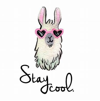 Llama Clipart Funny Cool Coffee Cliparts Stay