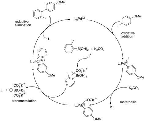 Suzuki Coupling Reaction by Suzuki Miyaura Reaction Chemfinder