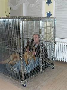 what crate size german shepherd dog forums dogs With dog crate size for german shepherd