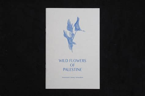 motto distribution blog archive wild flowers