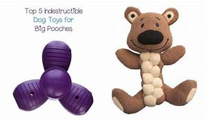 The 5 most indestructible dog toys dogvills for Best indestructible dog toys