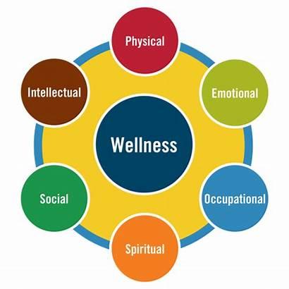 Health Services Student Medical Wellness Staff Sierra