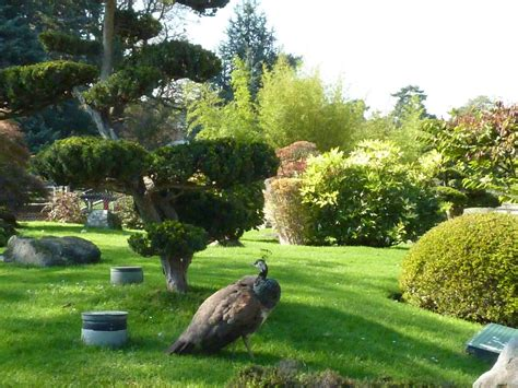 the jardin d acclimation retains its mid 19th century