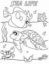 Coloring Sea Under Pages sketch template