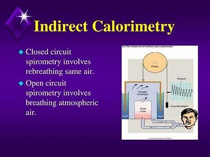 Indirect Calorimetry Energy Spirometry Circuit Open Air