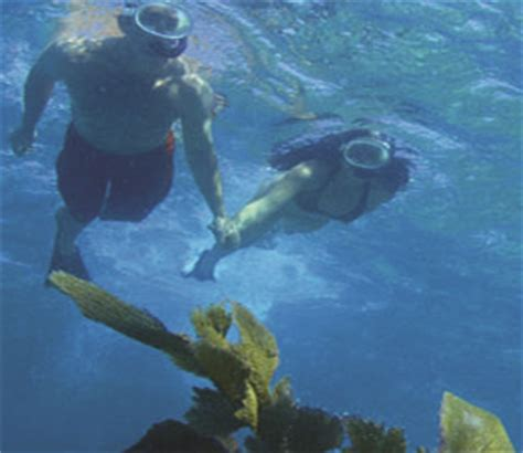 Snorkeling In Key West Without A Boat by Come To Key West To Snorkel Shipwrecks Best On Key West
