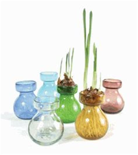 Light Bulb Vase Buy by Glass Vases On Bulbs Vase And Recycled Glass