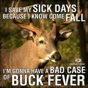 Buck Quotes. Qu... Elk Animal Quotes
