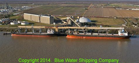 Cargill, Inc. - Reserve - Blue Water Shipping, Inc.