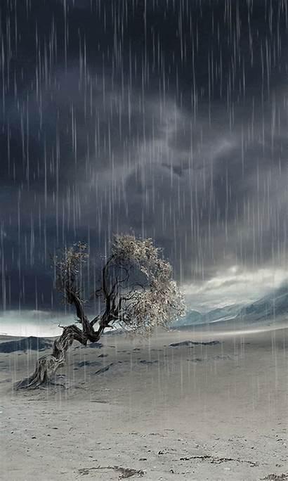 Rain Lonely Landscape Nature Phone Animated Tree