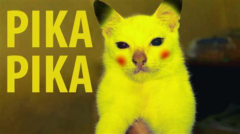 Edit Edit Lucu Make Pikachu Real Life ⚡ Youtube