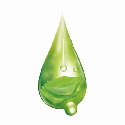 Drop Water Aloevera Drops Agua Droplets Explosion