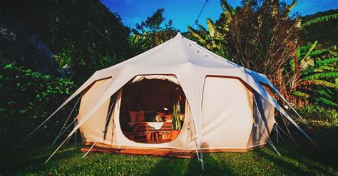canopy tent reviews quick  easy pop  shelters