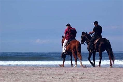 riding puerto rico horseback caribbean rincon beach