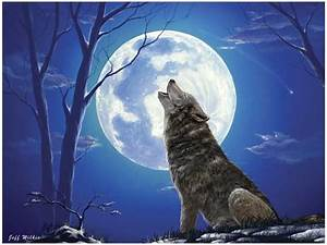 Post «3 'Lone Wolf' Stocks to Buy Now» in blog Bob Harris
