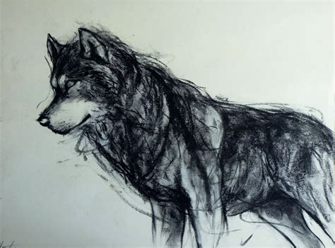 Wolf Tumblr Drawing