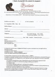 Contrat De Vente Voiture : contrat de vente entre particulier contrat de vente type voiture exemple contrat de vente ~ Medecine-chirurgie-esthetiques.com Avis de Voitures