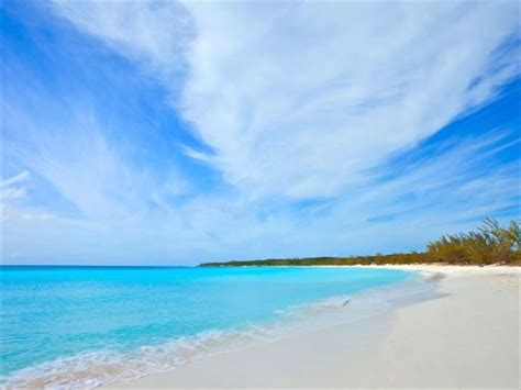 grand bahama island vacations book grand bahama island