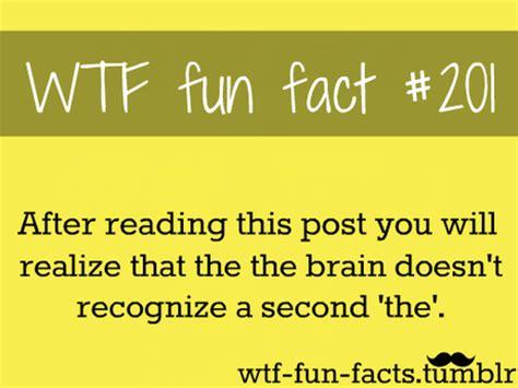 Fun Facts - Paperblog