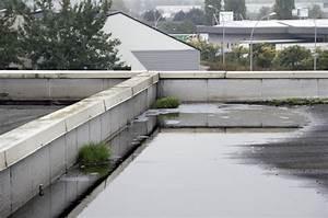 Infiltration Eau Toit : infiltrations sur votre toiture ~ Maxctalentgroup.com Avis de Voitures