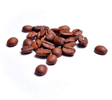 Single origin, blend, direct trade coffee. Arabica Coffee seed Butter - Atlantis Skincare
