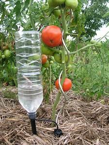 Système D Arrosage Goutte À Goutte : iriso goutte goutte irrigation pinterest arrosage jardin arrosage automatique potager ~ Melissatoandfro.com Idées de Décoration