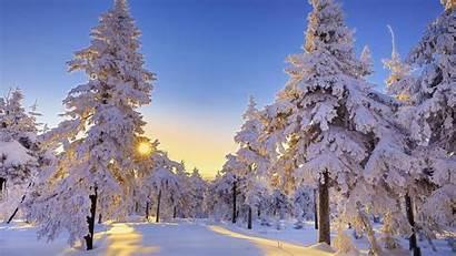 Winter Nature Wallpapers Sun Desktop Background Backgrounds