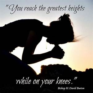 To Reach Height... Reach Heights Quotes