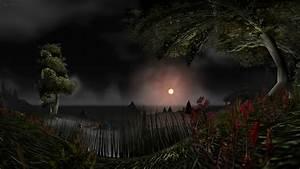 Moon over the coast HD wallpaper