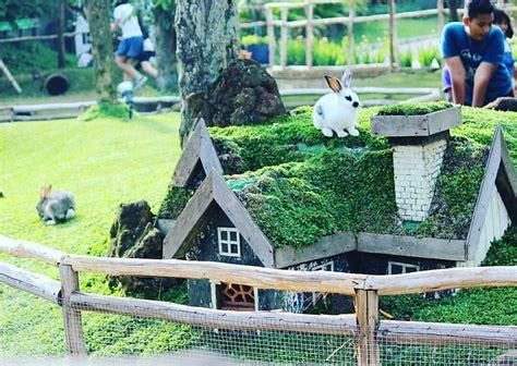 harga tiket masuk  lokasi rabbit park blitar spot