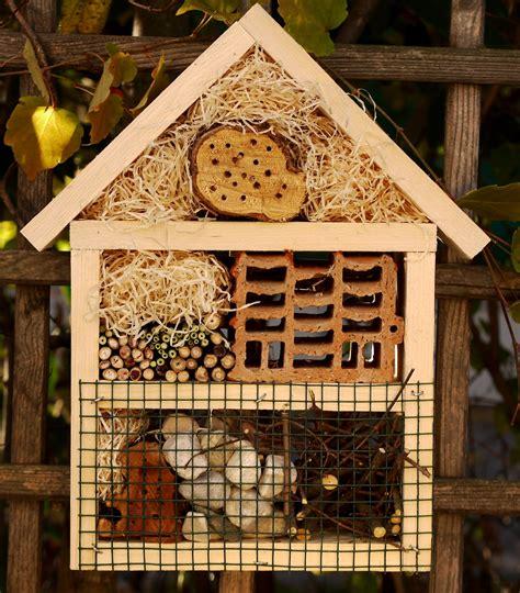 insektenhotel selber machen insektenhotel selber bauen gardening garten insektenhotel selber bauen und insektenhotel