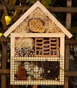 Insektenhotel Selber Bauen Anleitung : die besten 25 insektenhotel selber machen ideen auf pinterest vogelfutter diy vogelhaus und ~ Michelbontemps.com Haus und Dekorationen