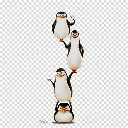 Penguin Clipart Transparent Cartoon Villain Penguins Madagascar
