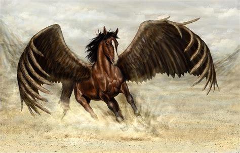 wings horse deviantart pegasus