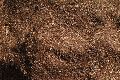 ground bark mulch bark ground control southern oregon