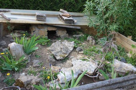 enclos pour tortues des steppes juv 233 niles