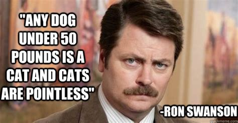 Ron Swanson Memes - quot any dog under 50 pounds is a cat and cats are pointless quot ron swanson ron swanson quickmeme