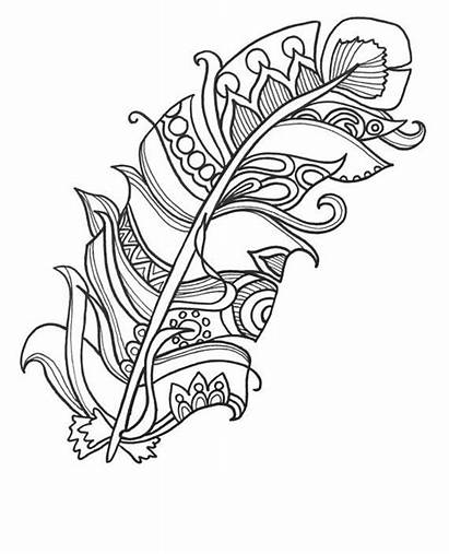 Coloring Pages Easy Adults Feather