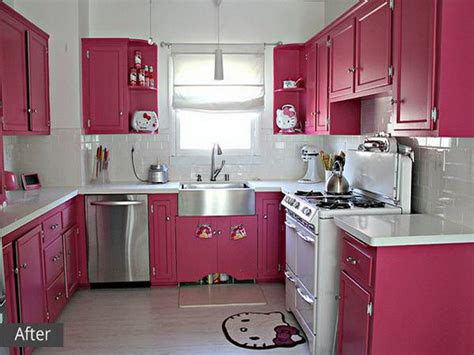 Accessories  How To Applying Hot Pink Kitchen Accessories