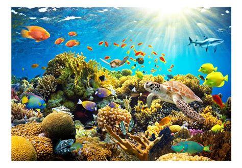 Fototapetes 59999 Zemūdens pasaule - Tapetenshop.lv