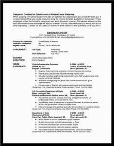 federal resume example template business With federal resume example