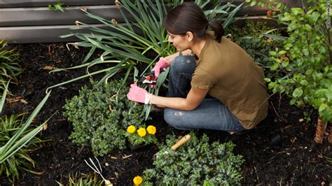 why gardening is for your health cnn