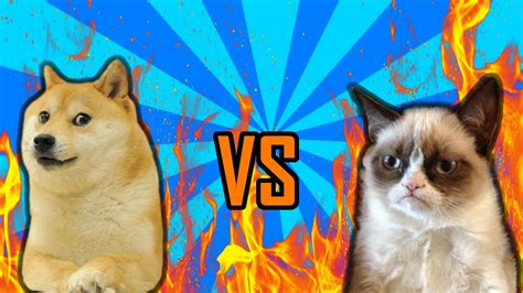 Doge Vs Grumpy Cat!? (would You Rather) Youtube