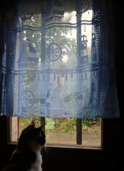 nouveaux rideaux quot bleu quot le blog de titanique