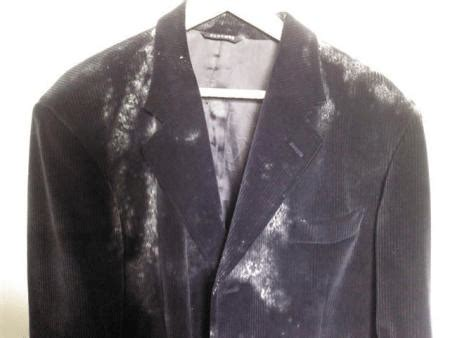 Mold In Closet by 3 Tips On How To Get Rid Of Mold On Clothes In Closet