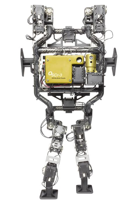 meet sam  bricklaying robot tools   trade
