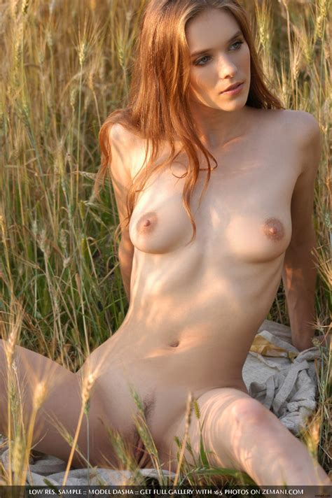 dasha nude in the field of love free zemani picture gallery at elitebabes